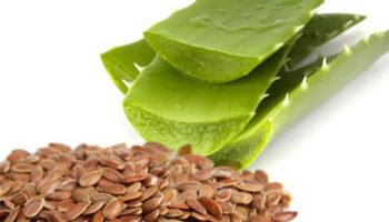Nutrients around You – Aloe Vera and Flax Seed