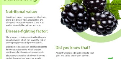 Blackberry – Health Benefit with Infographics
