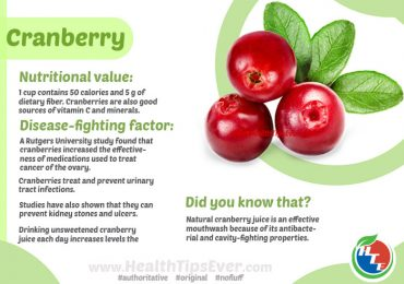 Cranberry Health Benefits with Infographics