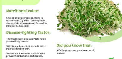 Alfalfa Sprouts Nutritional Benefits with Infographics