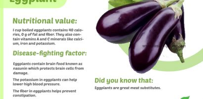 Eggplant Nutritional Value with Infograph