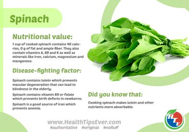 Spinach contains NO FAT but ample Fiber