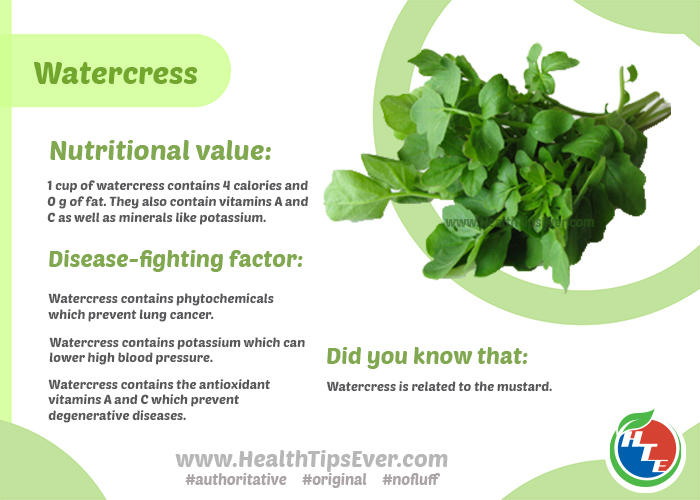 Watercress infographic