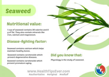 Seaweed – Does it really contain any nutrition?
