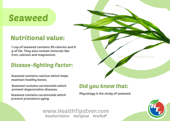 Seaweed nutritional value
