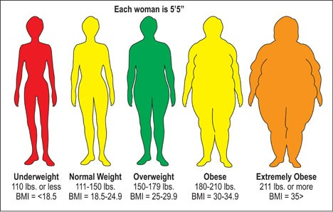 Body Fat Pictures and Percentages  Leigh Peele